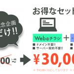 【web+名刺のセット】ネットチラシ1P+名刺100枚